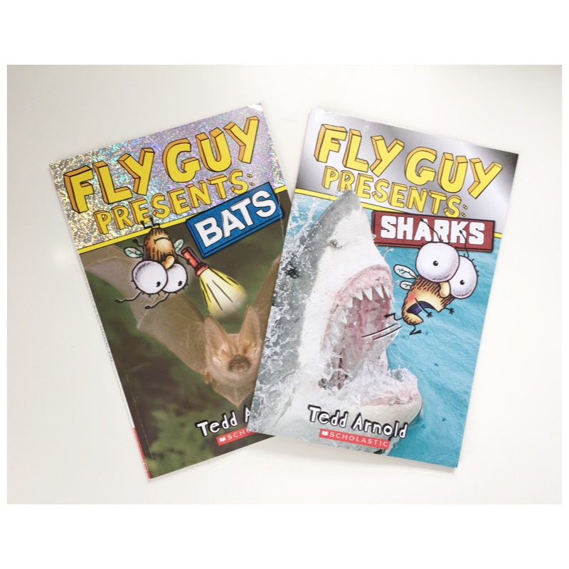 Fly Guy Presents: Bats Scholastic Reader, Level 2