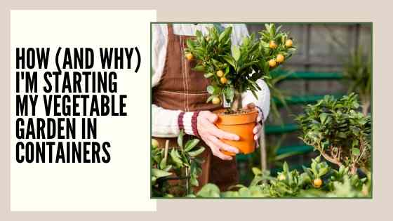 how-im-starting-a-vegetable-garden-in-containers